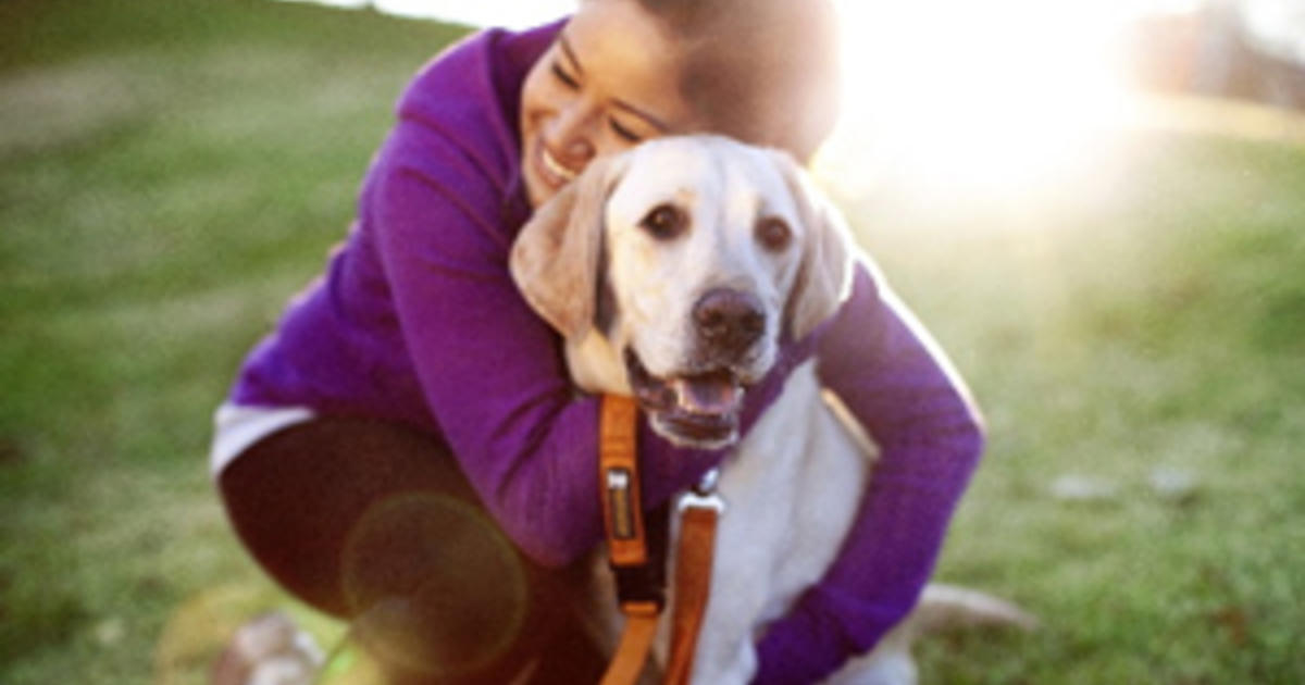 Dogs as Stress-Relievers for Students